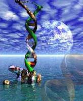 Halladas nuevas pistas del origen de la vida en el ARN